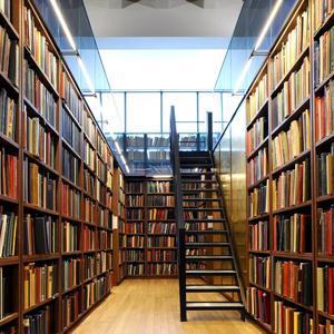 Библиотеки Алнашей